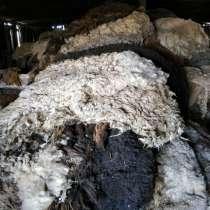 Продам шерсть овечью, в Волгограде