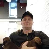 Алексей, 43 года, хочет пообщаться, в Санкт-Петербурге