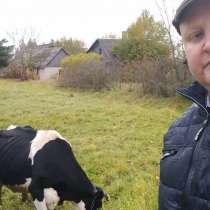 Путешествие в Латвию, в г.Цфат