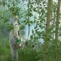 Обработка от клещей и кротов фирма дезинфекции в Раменском, в Раменское