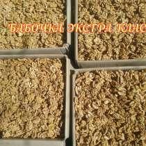 Грецкие орехи оптом, в Владикавказе