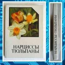 Нарциссы. Тюльпаны. Альбом-справочник, в Москве