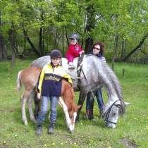 Верховая езда для самых маленьких, в Новокузнецке