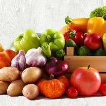 ООО«САНТИНА» фрукты, овощи оптом, в Москве