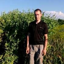 Игорь, 31 год, хочет пообщаться, в г.Брест