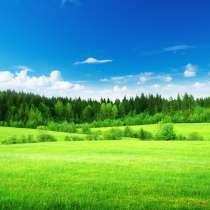 Пшеница 3 кл в количестве 15000тонн на элеваторе, в г.Астана