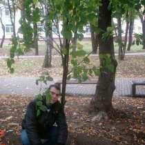 Сергей, 28 лет, хочет познакомиться, в Москве