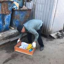 Разнорабочие, в Ростове-на-Дону