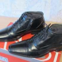 Продам мужские демисезонные ботинки AliBi, в Томске