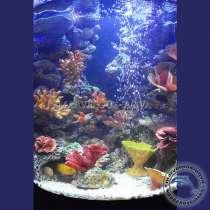 Где купить аквариум в челябинске, в Челябинске