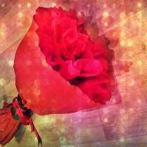 Букет из цветов, в г.Орша