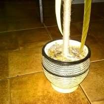 Декоративный горшочек, с шариком из кофе, в Якутске