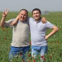 Рамиль, 47 лет, хочет пообщаться, в Нижнем Новгороде