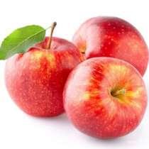 Куплю яблоки оптом, в г.Тирасполь