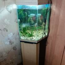 Продам аквариум, в Вологде