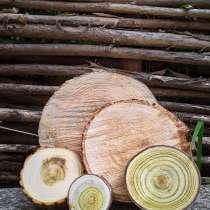 Древесные торцевые спилы для декора, панно, творчества, в г.Гомель