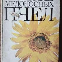 Книга В стране медоносных пчёл, в Санкт-Петербурге