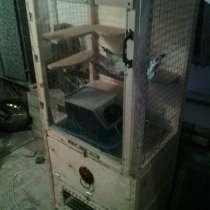 Клетка витрина, в Екатеринбурге