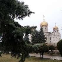 Кисловодск, Железноводск, Ессентуки на Ноябрьские, в Ростове-на-Дону