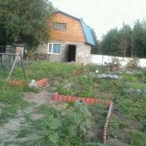 Дача, в Сургуте