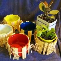 Дизайнерские горшочки для суккулентов и кактусов на заказ, в Москве