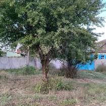 Меняю землевладение на квартиру в Белореченске, в Белореченске
