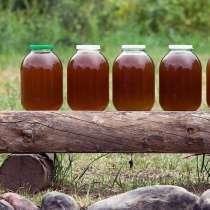 Натуральный мед, в Угличе