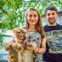 Фотосессия с обезьянкой, в Москве