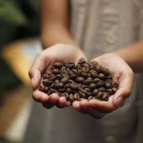 Продажа, доставка свежеобжареного кофе от производителя, в Липецке