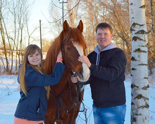 Конная фотосессия в Нижнем Новгороде фото 5