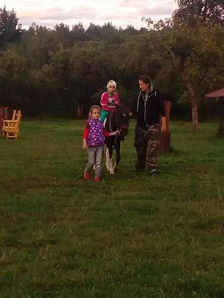 Верховая езда ребенка на пони. Полесск в Калининграде фото 6