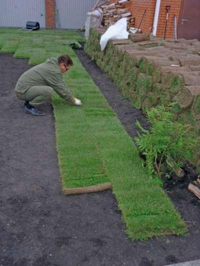 Подготовка основания земли под газон