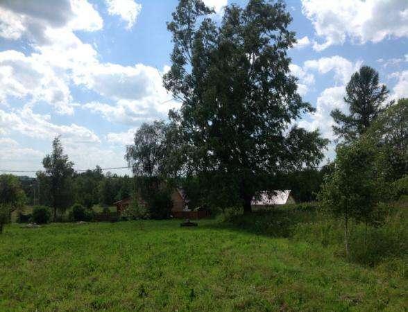 Продается земельный участок 30 соток(под личное подсобное хозяйство) в д. Шваново, Можайский район, 129 км от МКАД по Минскому шоссе.