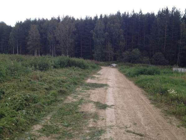 Земельный участок с. Курганово