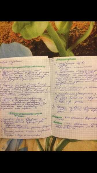 Перепишу конспекты и лекции
