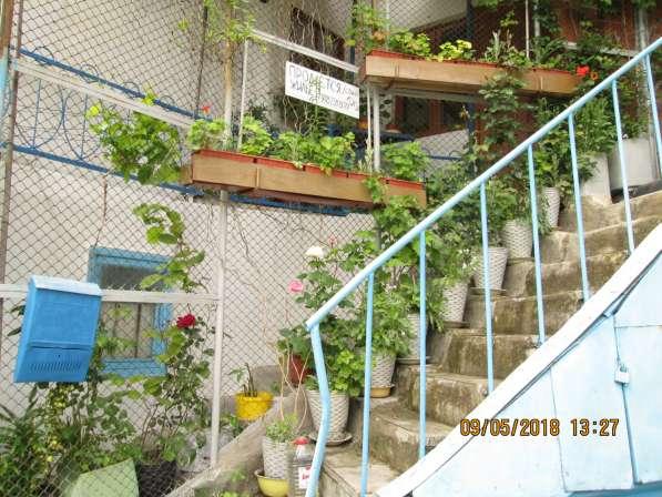Обмен недвижимости Нижний Мисхор на Ялту 1-2 квартиру в Ялте фото 3