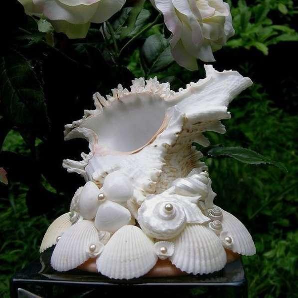 Сувениры в асортименте из морских раковин в Симферополе фото 7