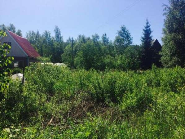 """Продается земельный участок 6 соток в СНТ """"Поиск"""", вблизи дер.Бели, Можайский район,119 км от МКАД по Минскому шоссе."""