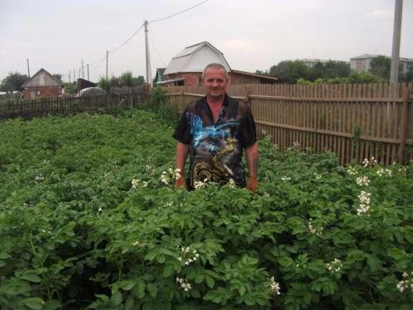 игорь, 57 лет, хочет познакомиться в Омске фото 3