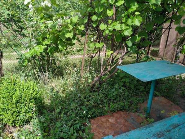 Ст. Сады участок с постройками 7,5 сот. Гомельский район в фото 6