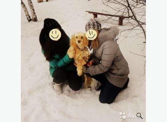 Зимний плащ-пуховик в Нижнем Новгороде фото 4
