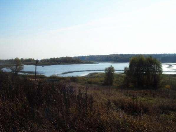 Продается земельный участок 21,5 соток под ЛПХ в деревне Мышкино (Можайское водохранилище)119 км от МКАД по Минскому Можайскому шоссе.