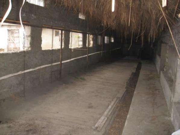 Обмен 2х домов с мини коровником на квартиру в Одессе в фото 13