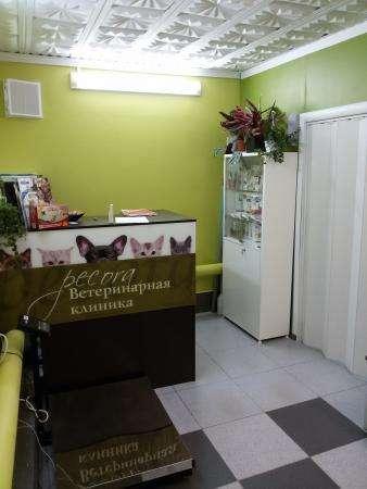 """Ветеринарная клиника """"PECORA"""""""