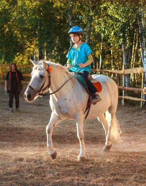 Уроки верховой езды.Обучение детей и взрослых. в Нижнем Новгороде фото 5