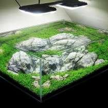Чистка аквариумов Симферополь Севастополь Ялта Алушта Евпат, в Симферополе