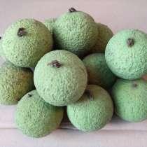 Чёрный(дикий) орех, плоды молочной спелости, сушёные, в Краснодаре