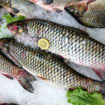 Свежая мороженая рыбка из Астрахани, в Подольске