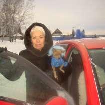 Соня, 62 года, хочет пообщаться – знакомства, в Новосибирске