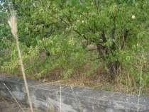 Продам садовый участок, в г.Севастополь